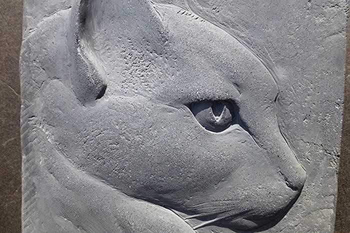 cat concrete art