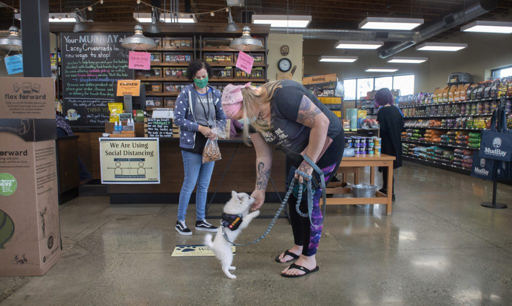 laws for a pet store