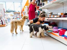 opening a pet store in Illinois