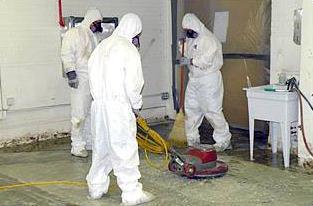 DIY abatement services
