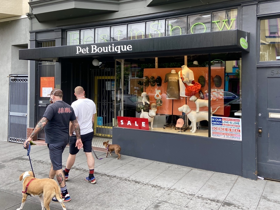 how to run a California pet store with a business consultant