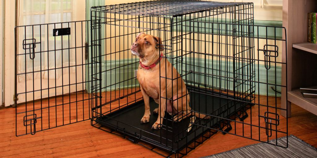 best dog cage