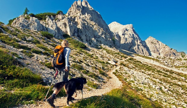 Hiking with Your Dog in Washington